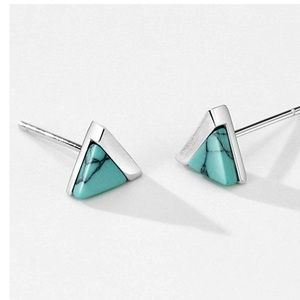 Turquoise Sterling Brushed Earrings